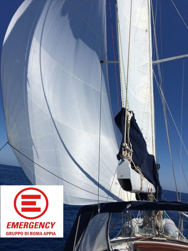 alisea Emergency logo