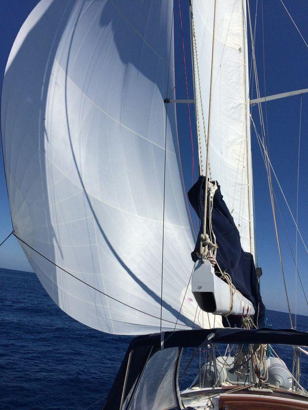 Weekend in barca a vela a Ponza e Palmarola