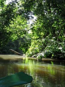 in barca al Parco Tortuguero Costa Rica