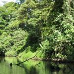 Tortuguero. Costa Rica. Indirizzario low cost.
