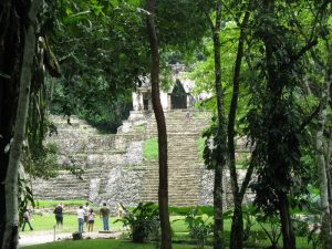 Palenque - SaritaLibre.it