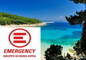 Emergency estate 2017